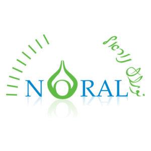 עיצוב לוגו נוראל